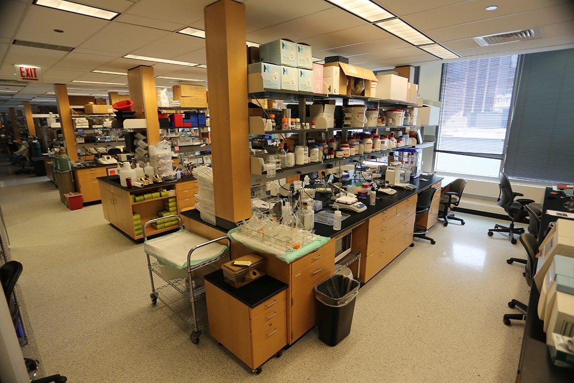 Chan Laboratory